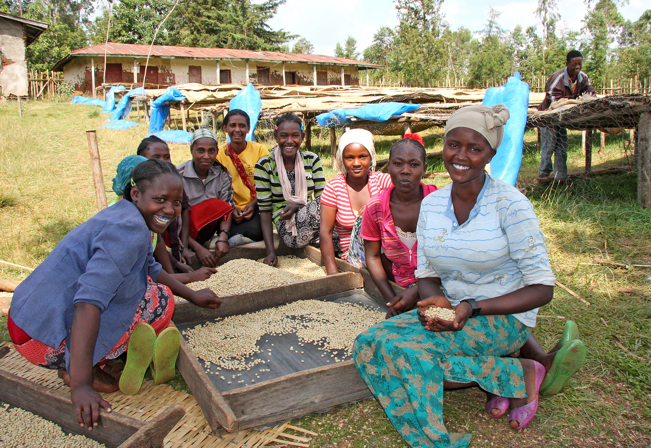 Africa Coffee Projects